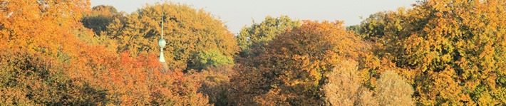 Header Chinaturm Herbst 03