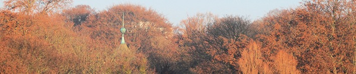 Header Chinaturm Herbst 04