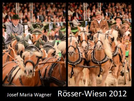 Rösser-Wiesn 2012
