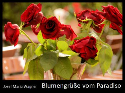 Blumengrüße vom Paradiso