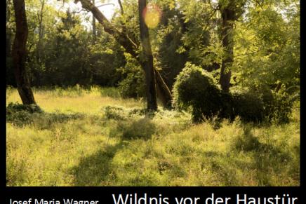 Wildnis vor derHaustür