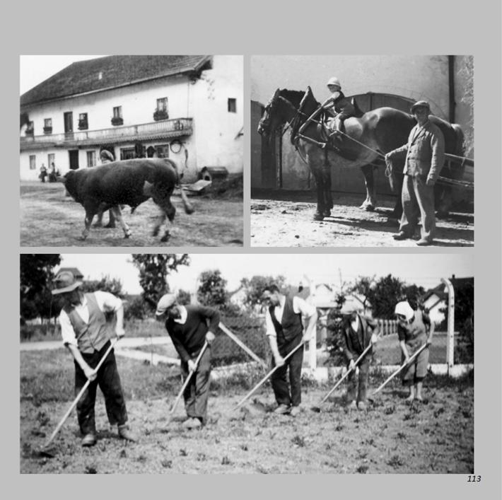 Im Hof und auf dem Feld in Ottmaring von 1940 bis 1960