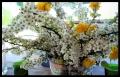 Blumengrüße 037