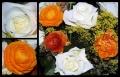 Blumengrüße 052