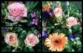 Blumengrüße 054
