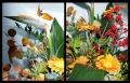 Blumengrüße 067