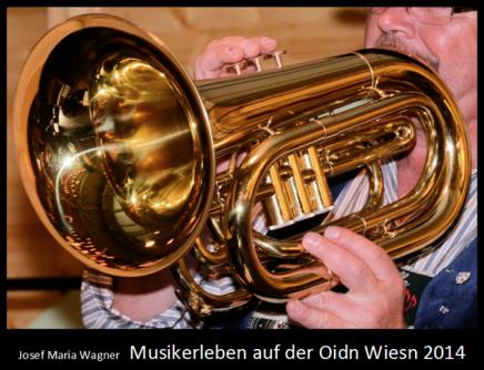 Musikerleben auf der Oidn Wiesn2014