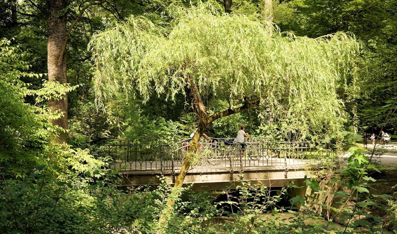 Prinz-Carl-Brücke