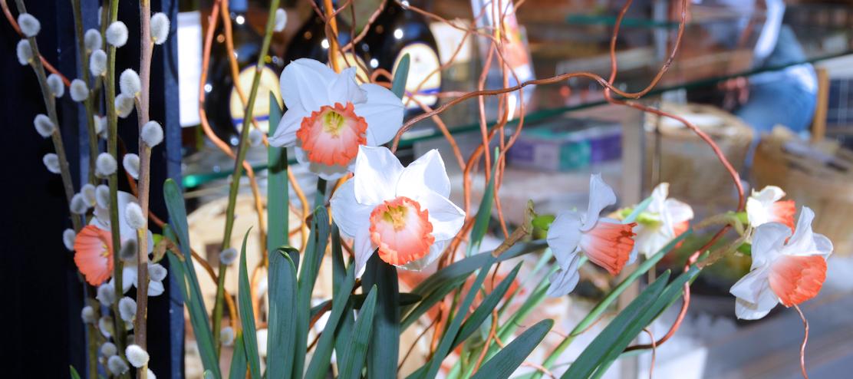 Frühlingsblumen auf dem Viktualienmarkt