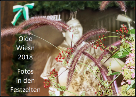 Oide Wiesn 2018 – Fotos in den Festzelten