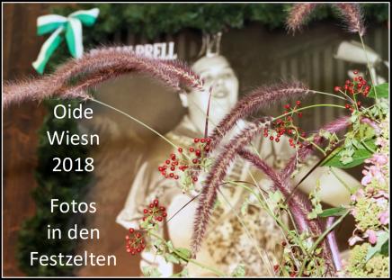 Oide Wiesn 2018 – Fotos in denFestzelten