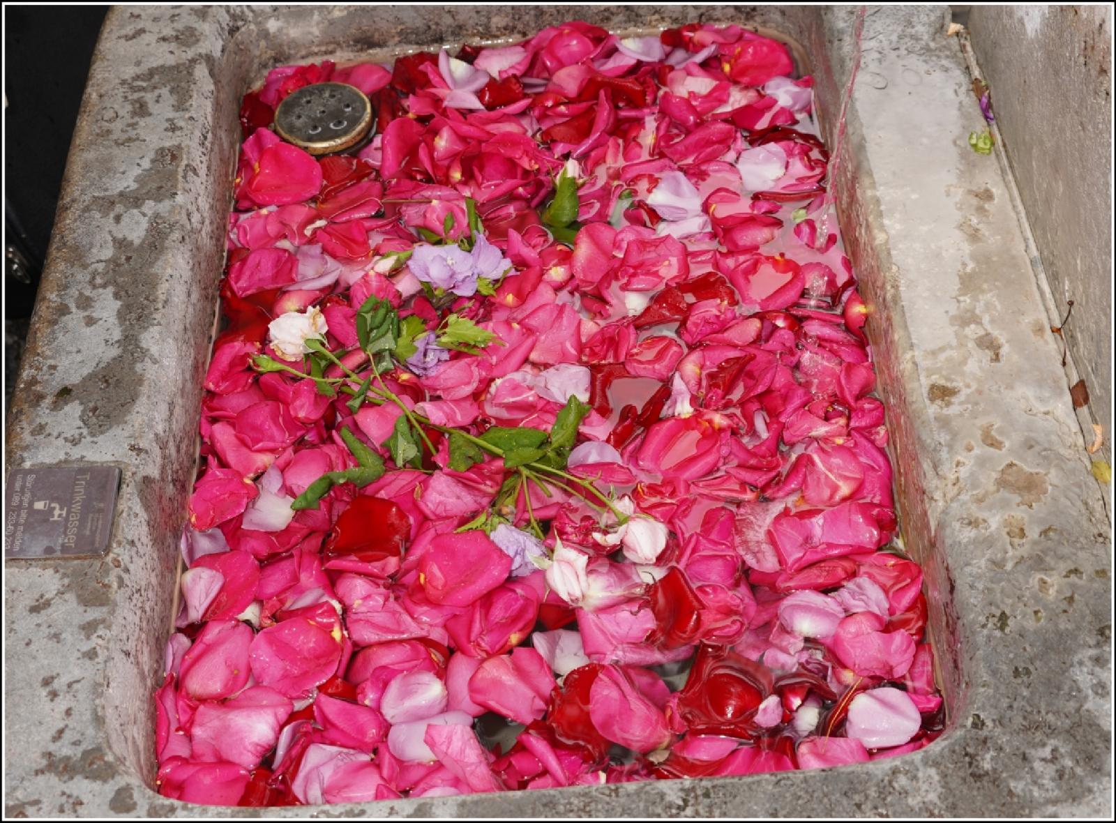 Wasserblumen beim Brunnenfest
